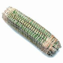 miondo /bâton de manioc frais ( 1 kg )